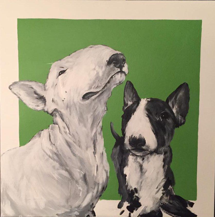 Dog_29